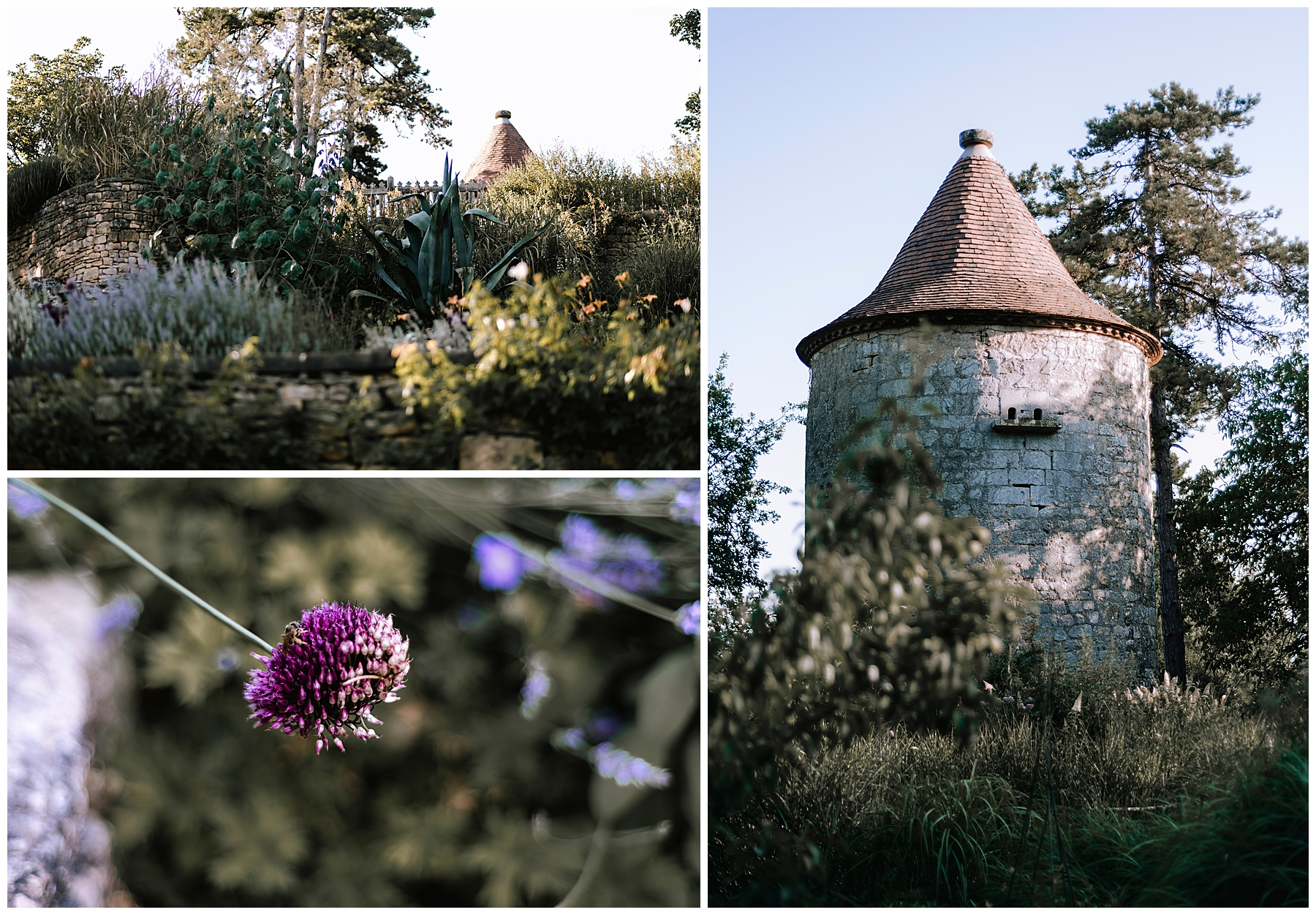 jardin de limeuil, photographe dordogne